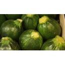 Courgettes rondes vertes le kilo