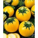 Courgettes rondes jaunes le kilo